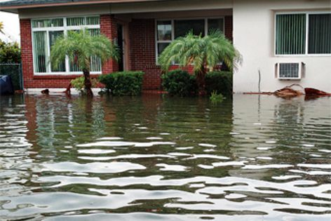 The Flooding & Insulation Technical Bulletin highlights ways to create a more flood resilient home.