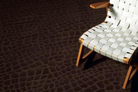 Outward Bound, shown here in Marsh, is part of the Monogram carpet range.