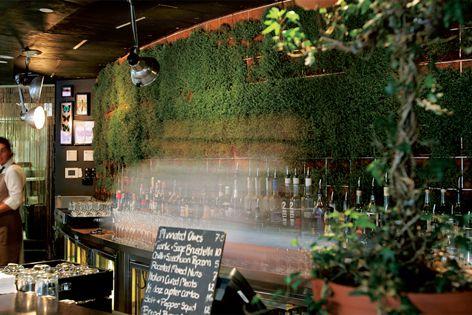 Greenwall vertical gardens