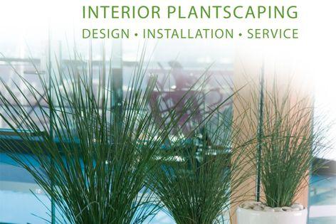 Interior plantscaping