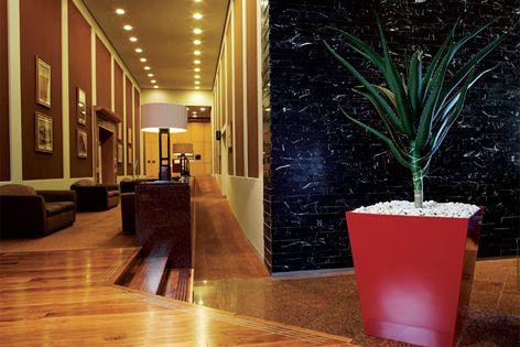 Rentokil Tropical Plants