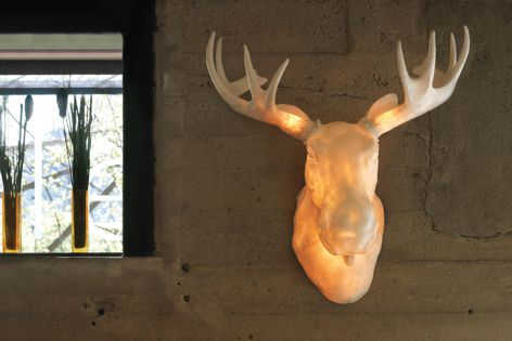 The Northern Lighting Norwegian Moose Head light.