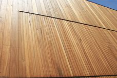 Expression cladding in blackbutt